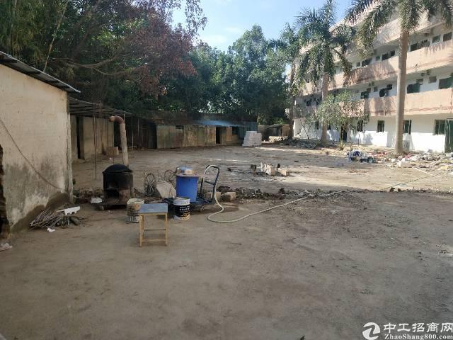 惠阳淡水新出原房东独门独院标准厂房12800平-图3
