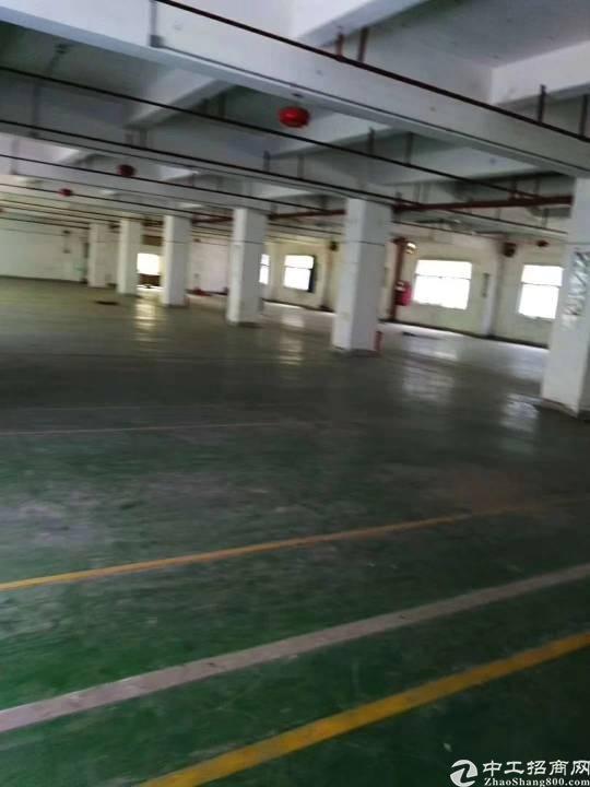 坪山大型工业区红本厂房出租楼上6000平米出租