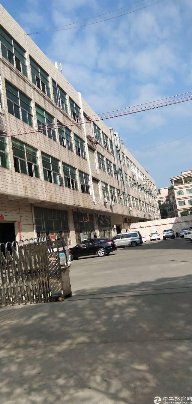 虎门镇小捷滘原房东厂房分租三楼1500平方