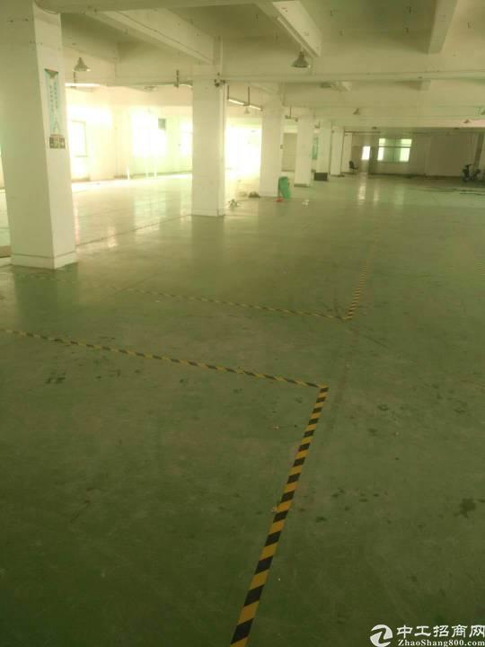 平湖鹅公原房东独院8000平方分租
