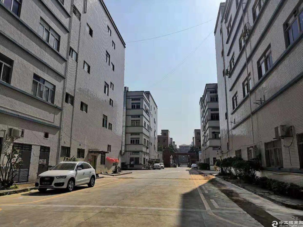 坪山龙湖工业区标准厂房三楼1390平方实际面积出租