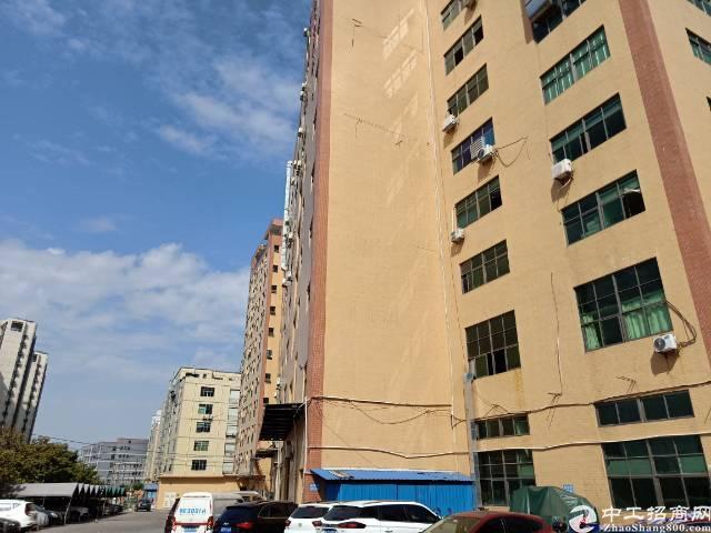 公明楼村一楼800平方租金26元有两吨行车