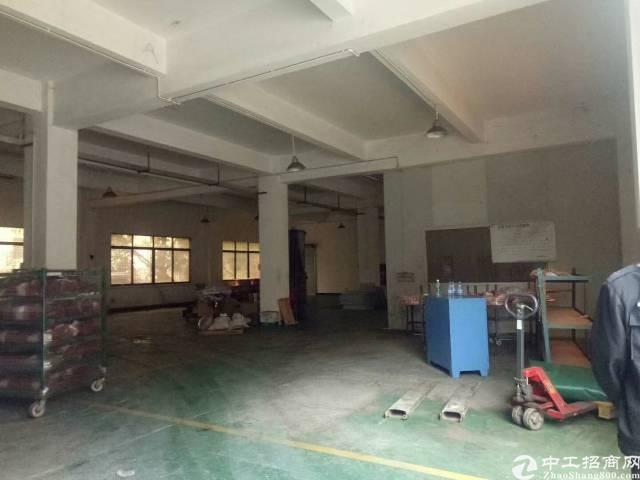 平湖富民工业区新出一楼640平厂房带冻库出租
