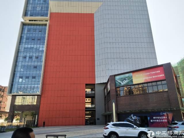西丽大学城商业写字楼120平写字楼招租