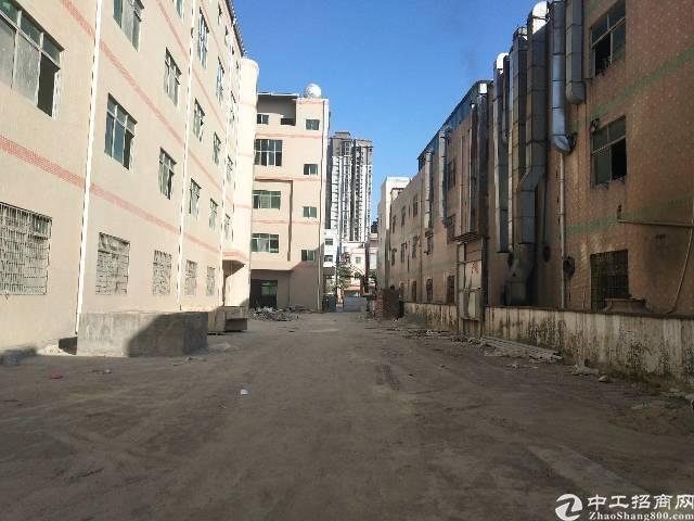 惠阳淡水新出原房东独门独院标准厂房12800平-图4