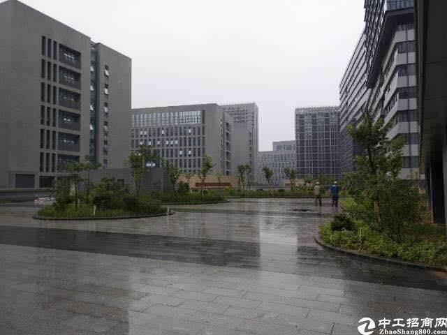 福永和平红本厂房36000平方大小分租-图3
