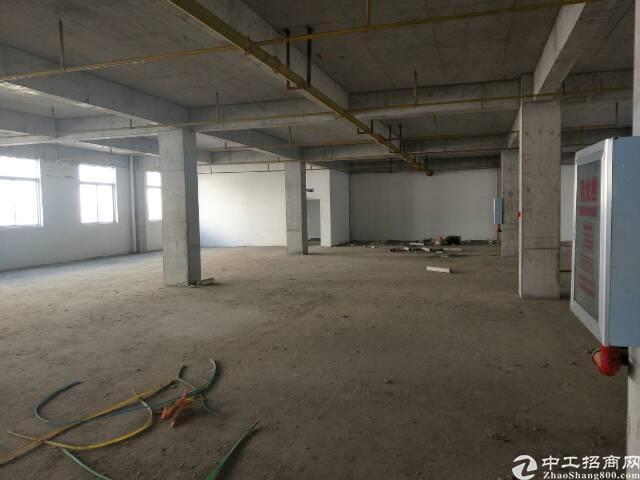 吴家山开发区一楼厂房500平,层高五米金龙鱼油厂对面。