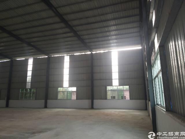 惠阳区淡水新空出钢结构厂房仓库出租1200平方