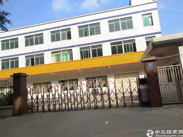 惠州市三和经济开发区标准独院楼房出租
