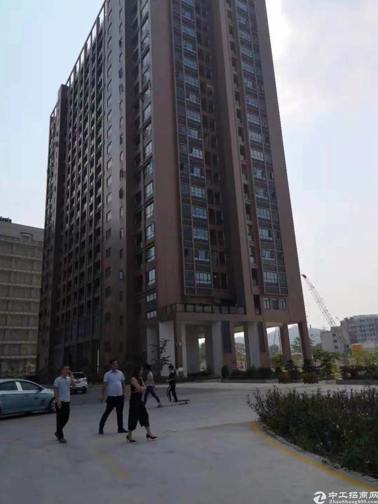 轻轨旁的高新产业园单层1800平68平以上大小可分租