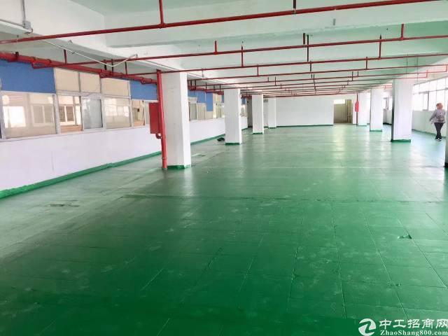 福永桥头带装修厂房1000平实际面积出租