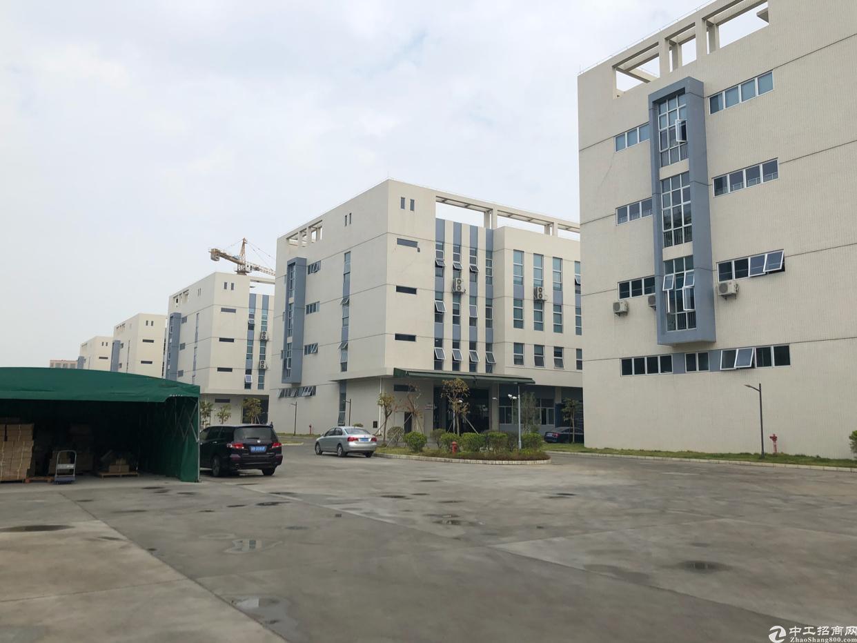 塘厦科苑城原房东一楼2000平方带装修厂房出租