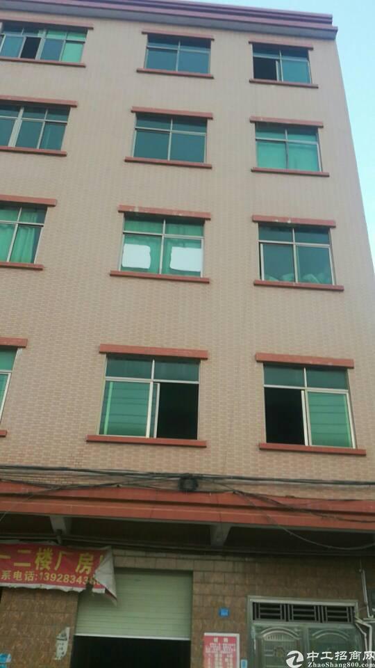 主干道边原房东7块分租厂房带货梯