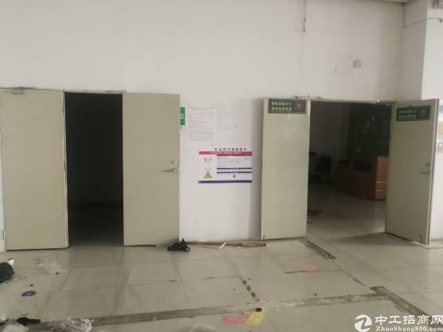福永福海带装修厂房600平无转让费