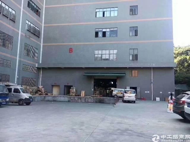 凤岗雁田楼上1500平方带装修面积实在