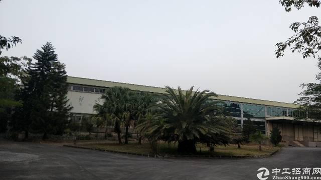 虎门镇白沙独院铁皮房招租1500平方,可以做污染行业。