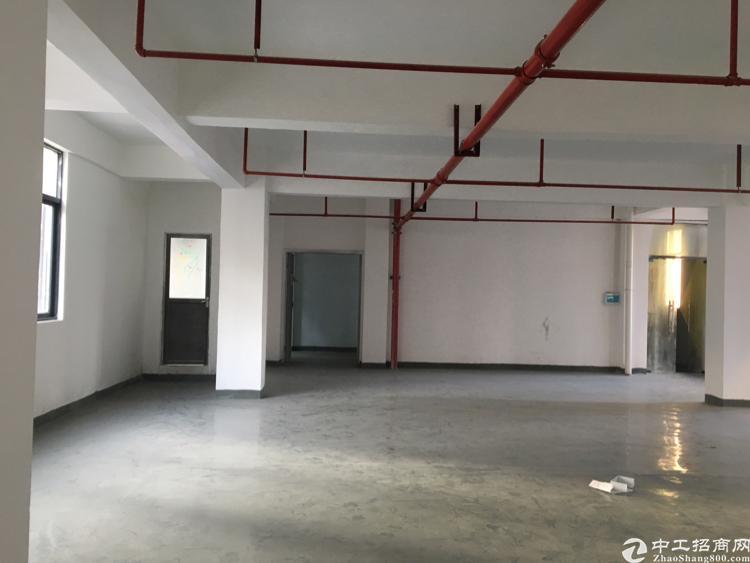 福永凤凰美盈精装修厂房260平方,带红本桃花源