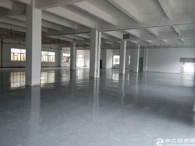观澜桂花新出2560平带红本厂房,全新地坪漆,层高5.5米