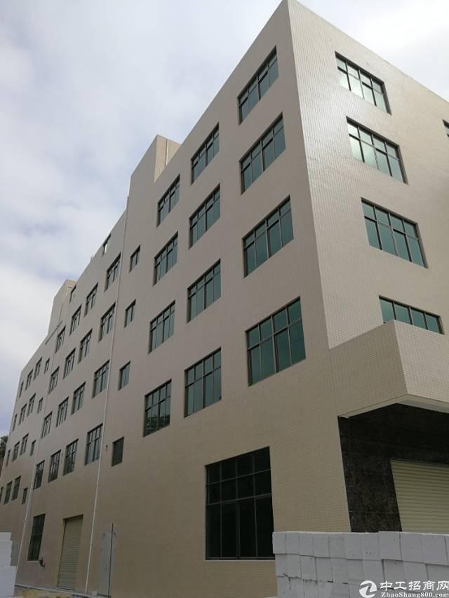 惠阳新圩镇占地2000㎡建筑4540平方㎡大工业园内独院厂房