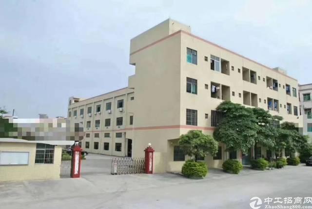 茶山镇出1--4层原房东标准厂房5500平米,独门独院