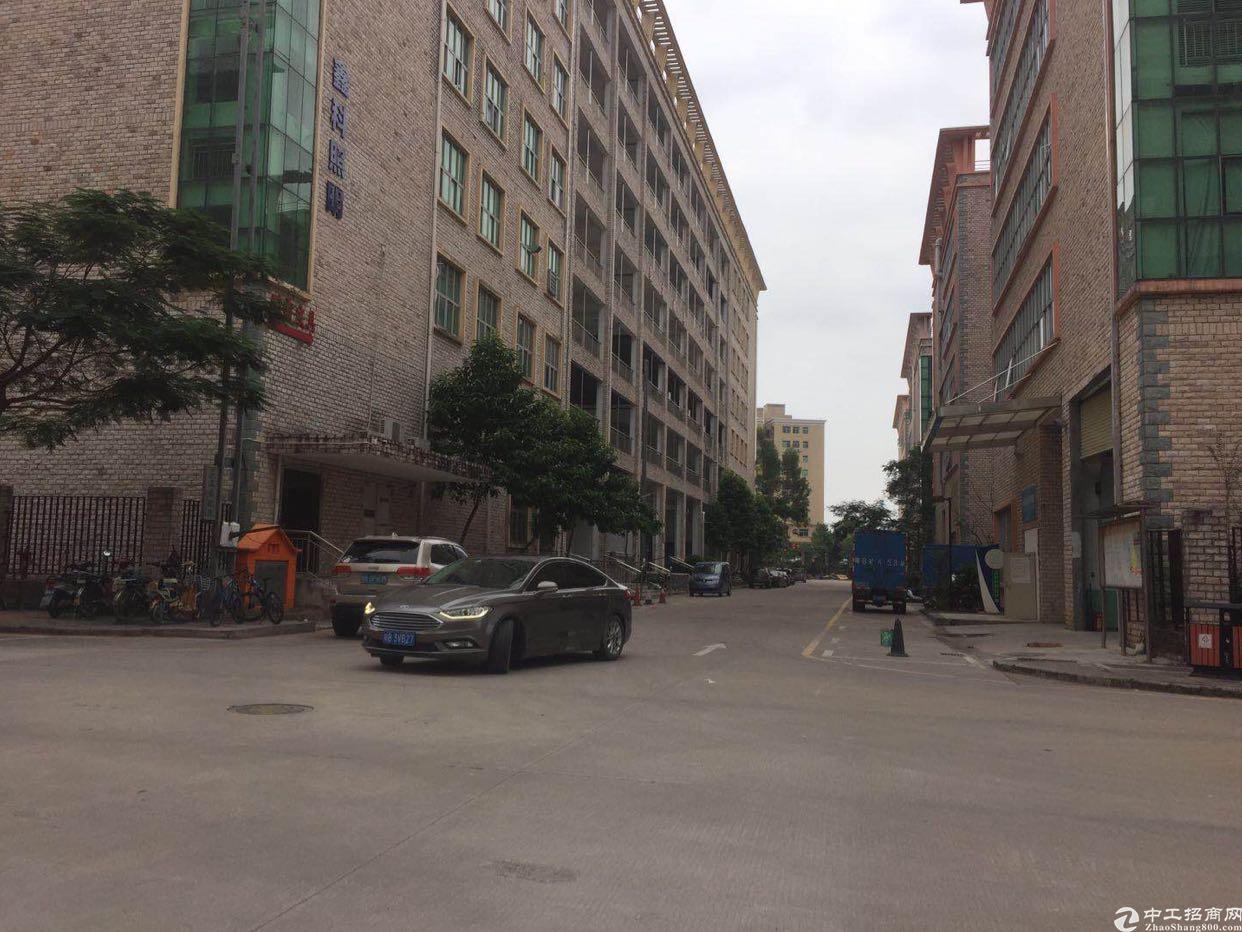 坑梓莹展工业区红本厂房一楼2780平方出租