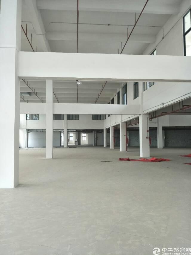 东莞市道滘现最繁华地段商业大楼招租