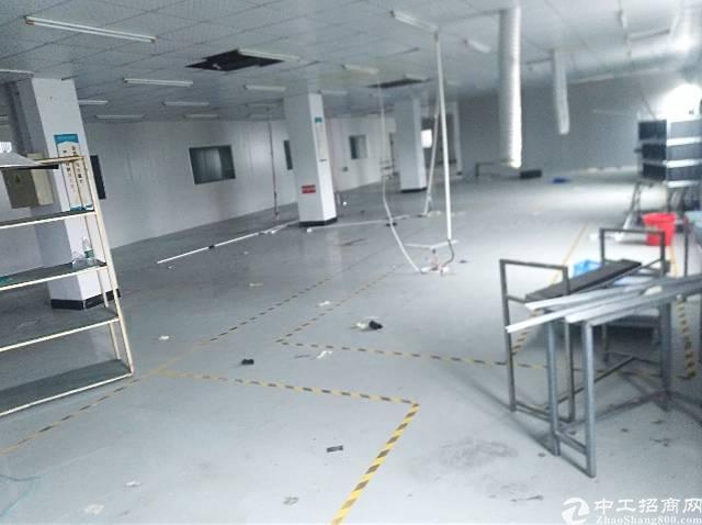 长沙星沙独门独院厂房招租108号-图8