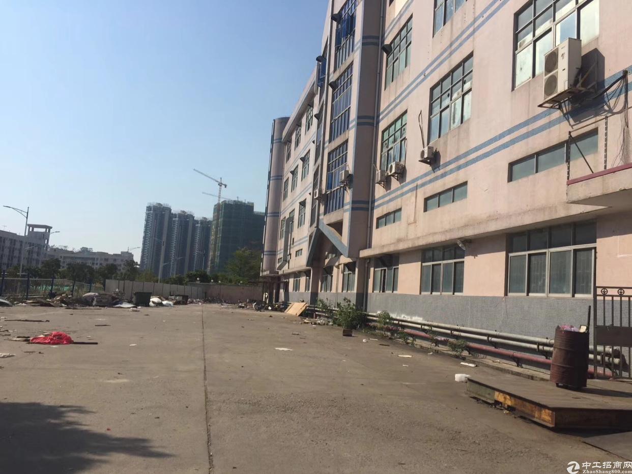 西乡银田工业区一楼1500平方大小可以分租
