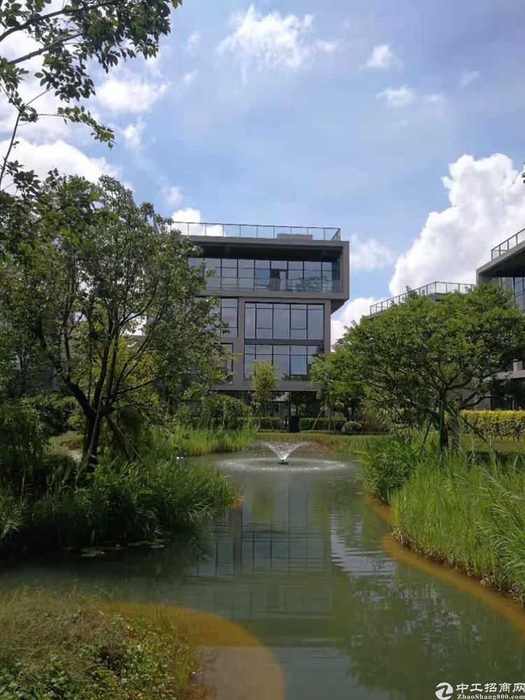 松山湖独栋别墅写字楼1200平米出售