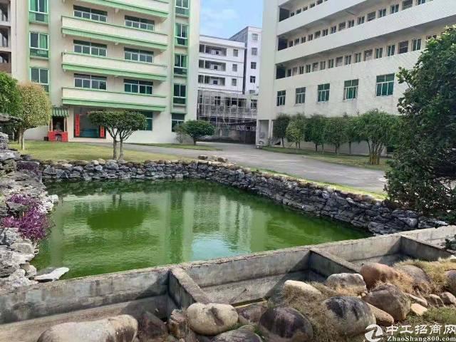 惠州惠阳平潭新出独门独院厂房有独立办公楼出租