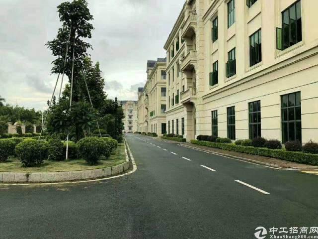 东莞市道滘镇位置最佳商业大楼,健身房,电影院,桌球城,跆拳道图片1