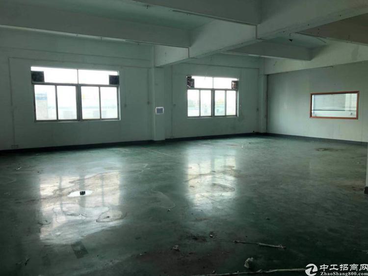 平湖山厦附近新出楼上1000平带装修标准厂房