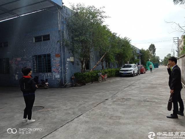 惠阳秋长维布出租独栋钢构厂房800平方
