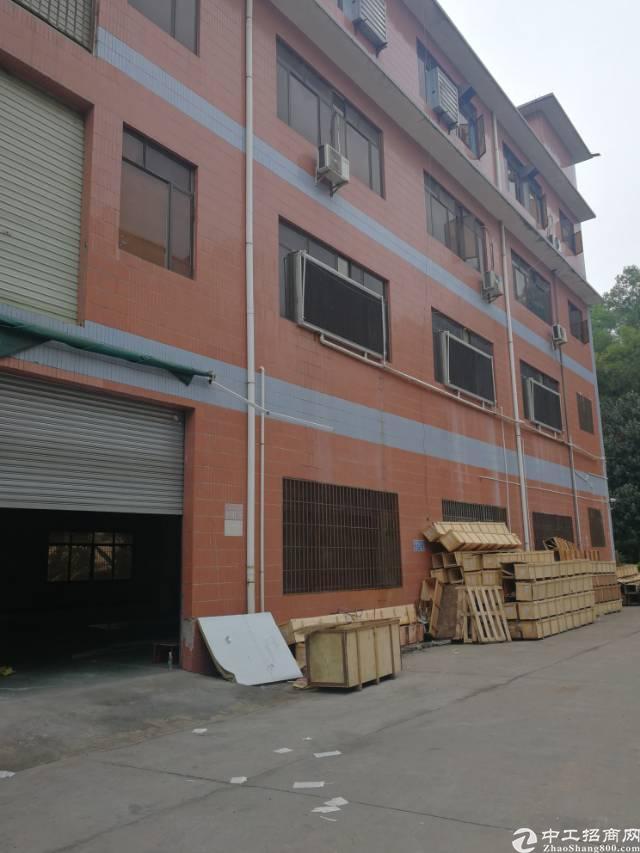 平湖富民工业区标准厂房700平出租