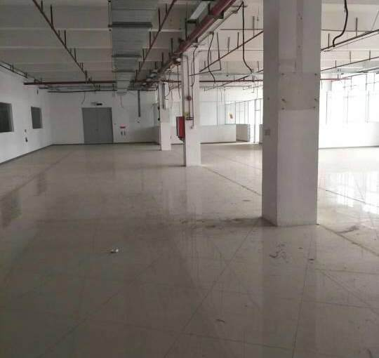 东莞市道滘镇位置最佳商业大楼,健身房,电影院,桌球城,跆拳道图片7