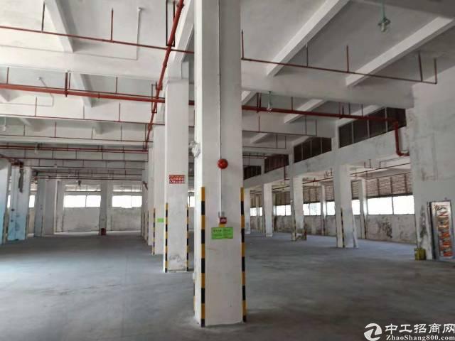 西丽标准厂房物流仓库2700平方层高7米招租