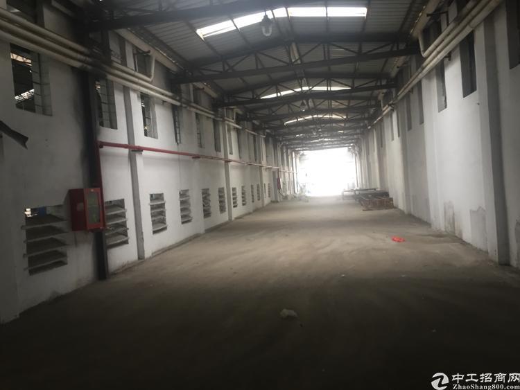 坪山坑梓新出600平米铁皮房,配有办公室