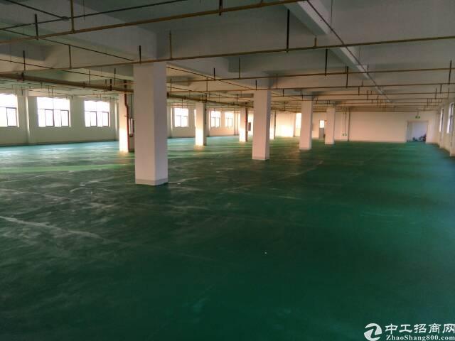 黄陂临空区联排独立整栋厂房5500平米,手续齐全,整栋出售