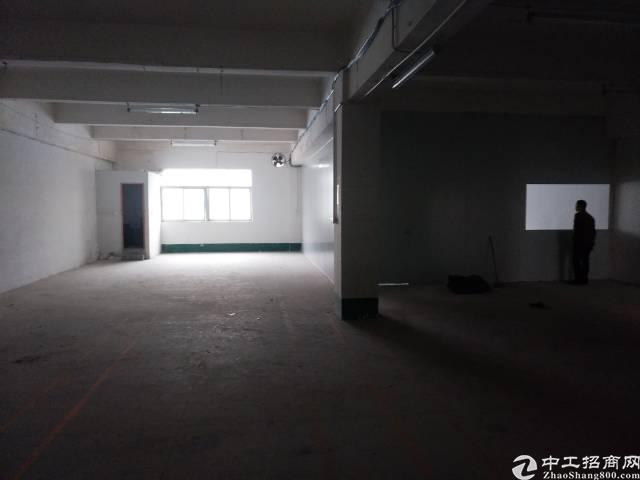 凤岗镇金凤凰新出二楼380平方现成装修