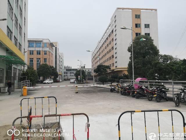 新塘镇银沙工业区独院独栋分租厂房招租