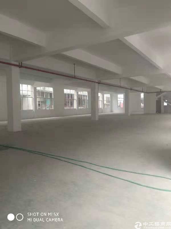 石碣新出标准厂房二楼600平方对外出租
