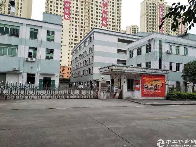 茶山镇新出独院厂房总面积1500平米招租,原房东非常的漂亮