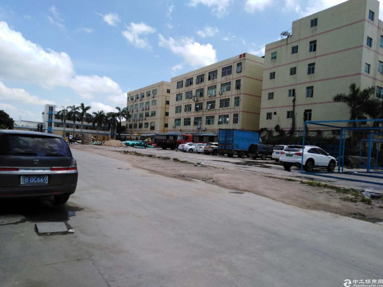 石岩新出独院钢构6000平米高8米厂房仓库可分租