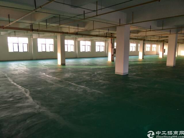 吴家山舵落口仓储物流园,815平米仓库配3吨货梯。