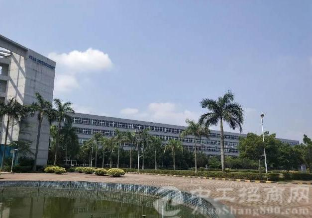 东莞新出外经工业园 最新出楼上一层4000平方 14元