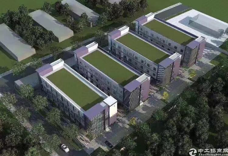 龙华地铁站旁3300平原房东3层小独院招租可分租