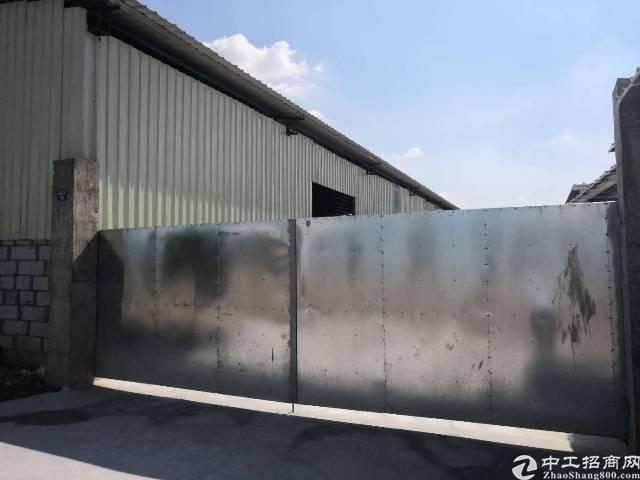 万江单一层滴水8米钢结构厂房3000平方租15元