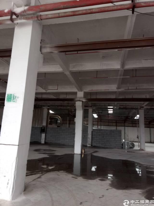 夏浦7米高厂房