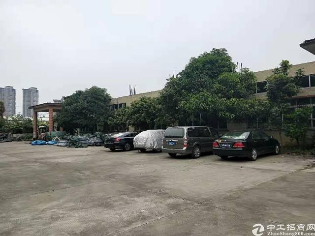 原房东单一层独院标准厂房2500平方出租