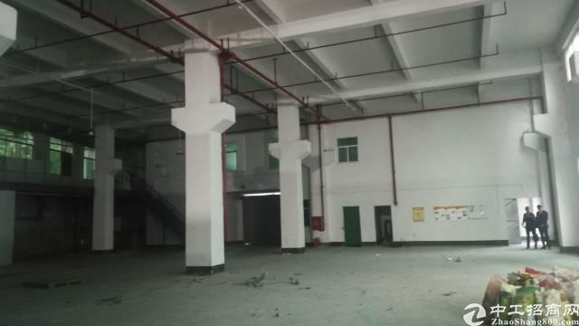 东莞市凤岗镇一楼1400平方高8米高带牛角